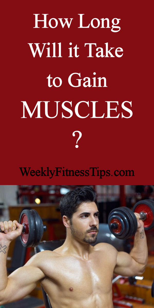 How Long Will It Take To Gain Muscles